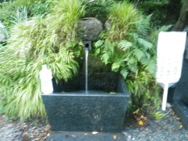 浅間神社「木の花名水」