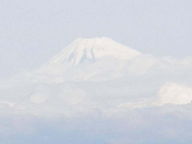 富士山の写真in伊豆大島