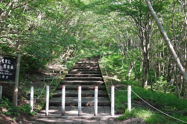 須走ルートの登山道の写真06