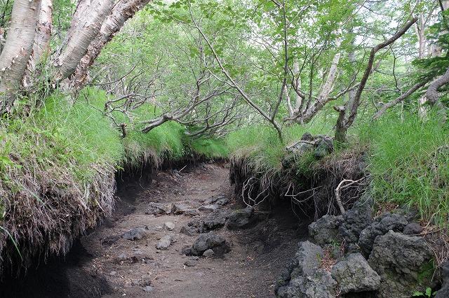 須走ルートの登山道の写真11