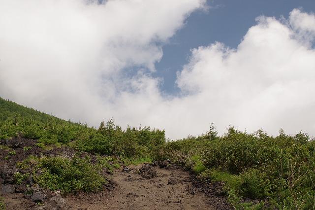 須走ルートの登山道の写真14