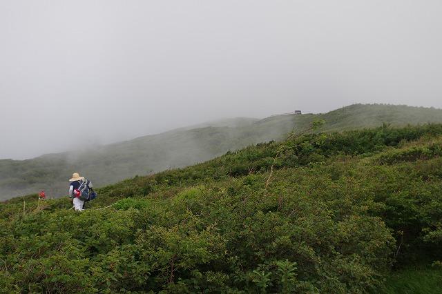須走ルートの登山道の写真19