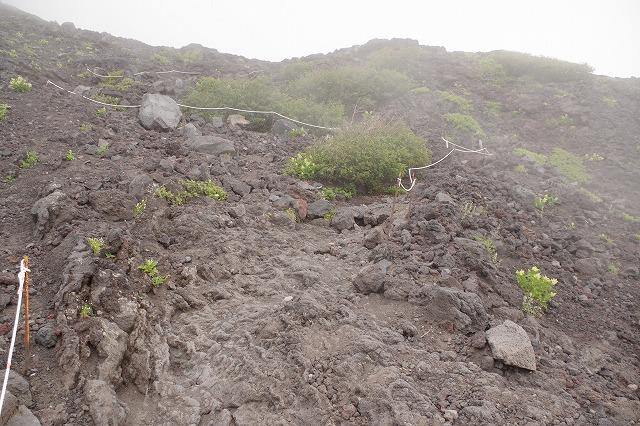 須走ルートの登山道の写真36